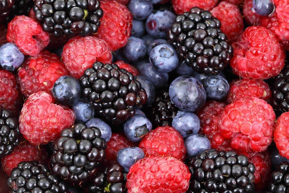 Singapur se abre a las berries de Jalisco