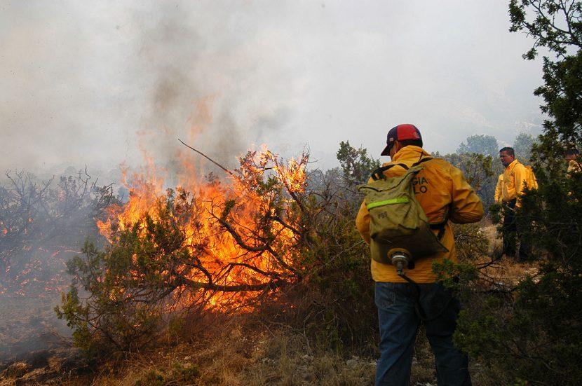 Aumentan incendios provocados por el calentamiento global