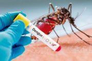 Brigadas contra el dengue amplían sus acciones en el estado