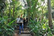 Jardín de la Selva: el paraíso de las orquídeas en la Riviera Nayarit