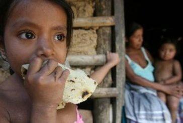 Casi ocho millones de personas podrían pasar hambre por pandemia