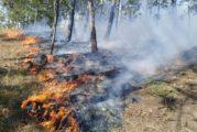 Semadet reitera el llamado a hacer un uso responsable del fuego en zonas agropecuarias