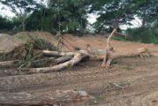 Presentarán en el Congreso del Estado exhorto para que se investigue devastación en río Pitillal
