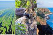Áreas Naturales Protegidas de la Riviera Nayarit, un tesoro de biodiversidad