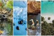 Tu vida nos importa: Riviera Nayarit promueve la conciencia y acción en favor del ambiente