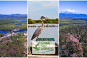 Observa aves desde Riviera Nayarit en el Global Bird Weekend 2020