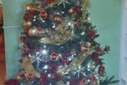 Inicia Ayuntamiento campaña de acopio de árboles navideños