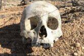 """Hallan tres """"lotes"""" de restos óseos en campo de entrenamiento de Tepa"""