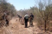Horror en Nuevo León: contabilizan siete campos de exterminio del narco con más de 867,000 restos humanos