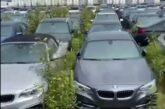 Más de 3,000 autos BMW completamente nuevos están abandonados y pudriéndose al aire libre